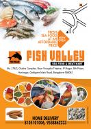 Fish Valley