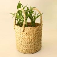 Kauna Grass Round Planter